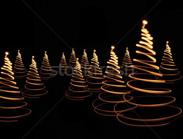 árvore luzes preto floresta projeto Foto stock © jonnysek