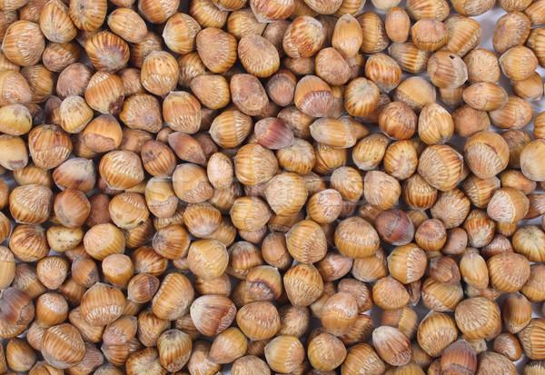 hazel nuts Stock photo © jonnysek