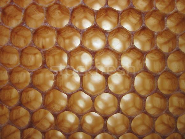 beeswax texture without honey Stock photo © jonnysek