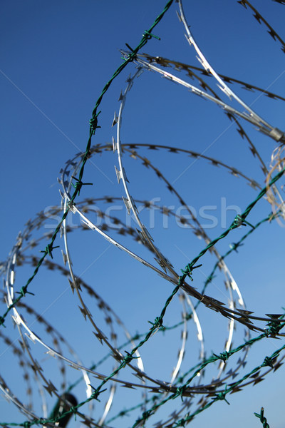 barbed wire background Stock photo © jonnysek