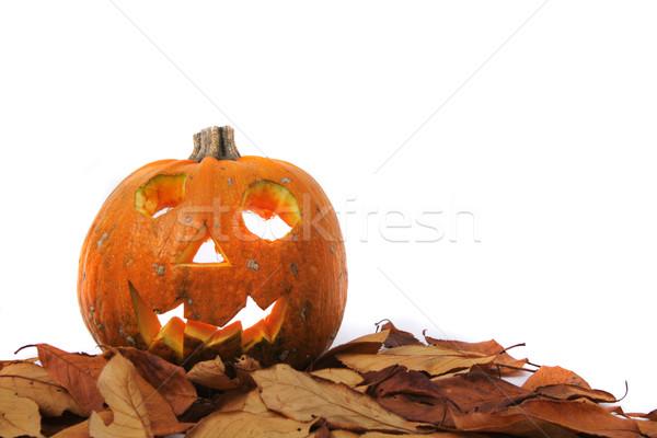 Halloween décoration citrouille isolé blanche alimentaire Photo stock © jonnysek