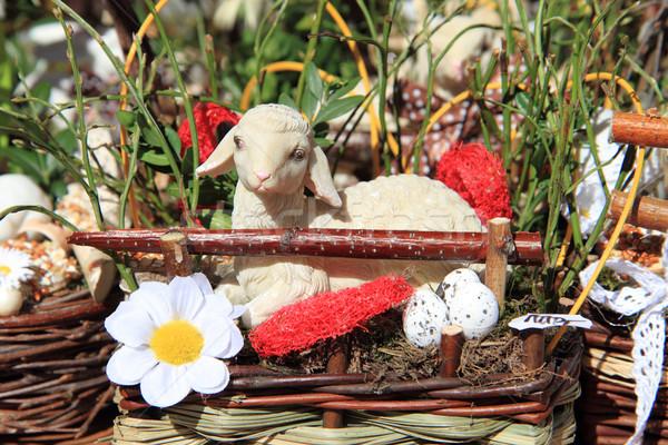 Küçük koyun güzel Paskalya Çek gıda Stok fotoğraf © jonnysek