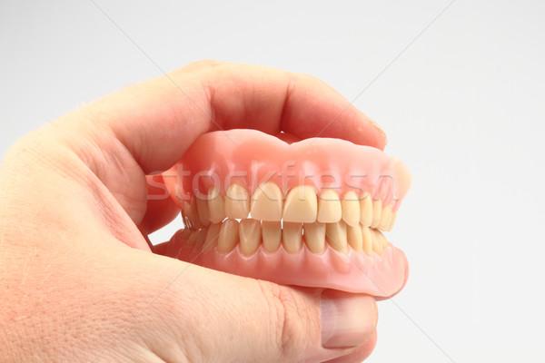 Dişler protez insan eli yalıtılmış beyaz gülümseme Stok fotoğraf © jonnysek