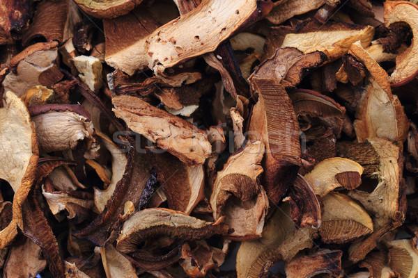 Secas comestível cogumelos bom comida floresta Foto stock © jonnysek