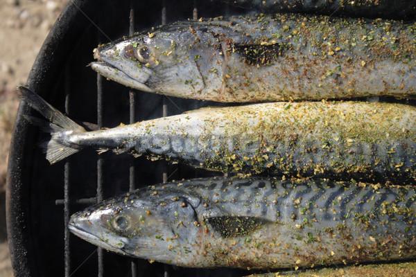 grilled fishes background Stock photo © jonnysek