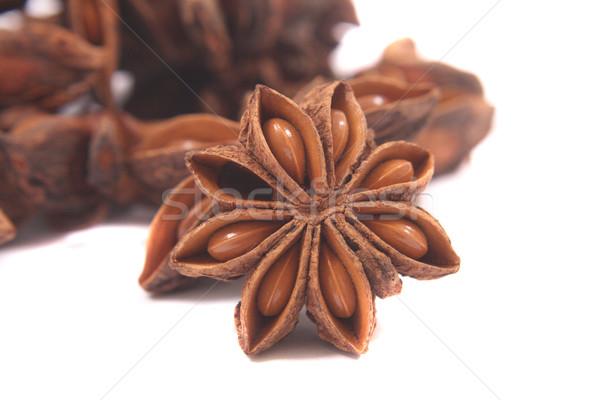 Anis estrela isolado branco natureza semente Foto stock © jonnysek