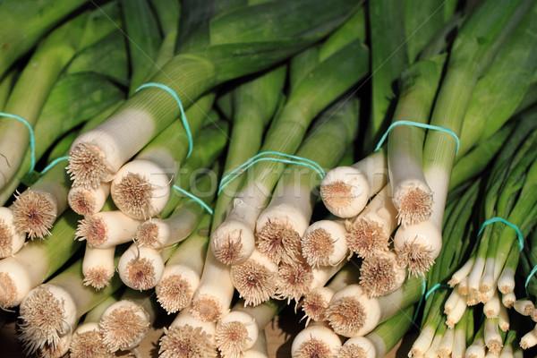 Taze yeşil pırasa güzel sebze doğa Stok fotoğraf © jonnysek