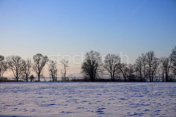зима стране Чешская республика пейзаж улице снега Сток-фото © jonnysek