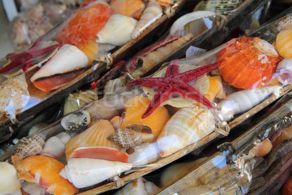 shells souvenirs from Greece Stock photo © jonnysek