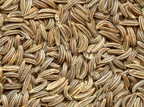 Stockfoto: Karwij · bruin · textuur · zaad · Spice · natuurlijke