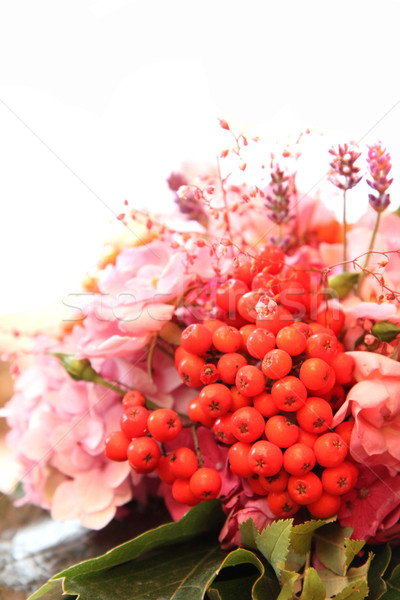rowan berries as wedding flower Stock photo © jonnysek