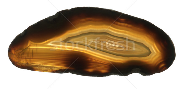 brown agate gem isolated  Stock photo © jonnysek