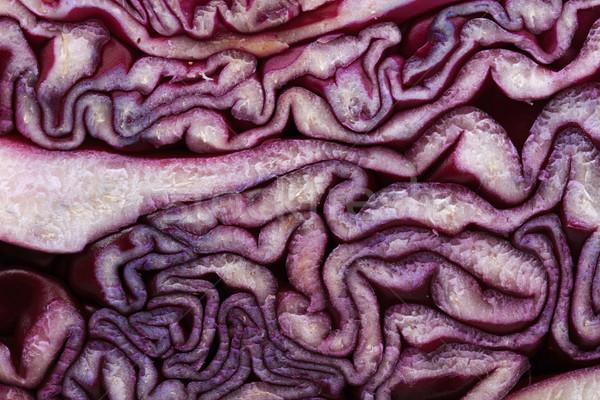 red cabbage background Stock photo © jonnysek