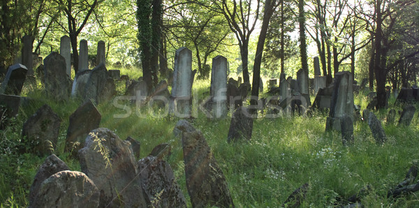 old jewish burial place Stock photo © jonnysek
