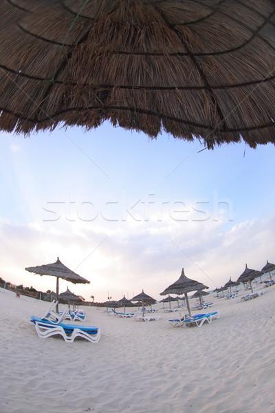 beach Stock photo © jonnysek
