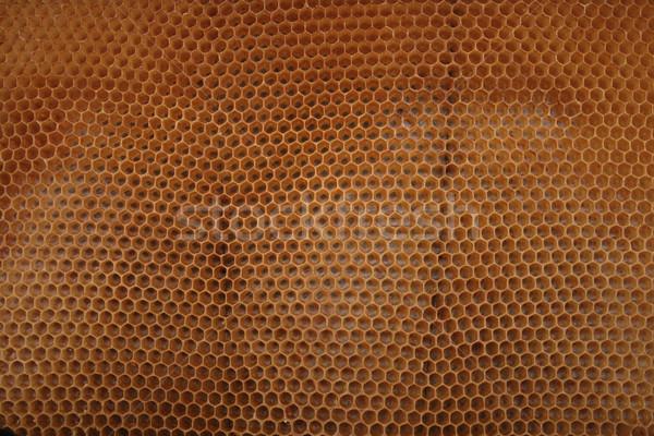 beeswax wirhout honey  Stock photo © jonnysek