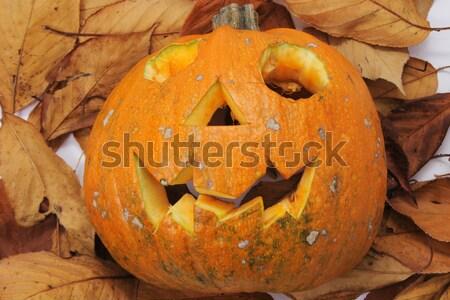 Halloween tök ősz levél étel gyümölcs jókedv Stock fotó © jonnysek