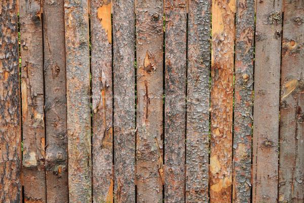 Ugatás fa textúra szép természetes textúra fa Stock fotó © jonnysek
