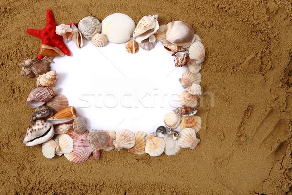 shells, sand, white paper Stock photo © jonnysek