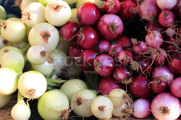 fresh red and white onions  Stock photo © jonnysek