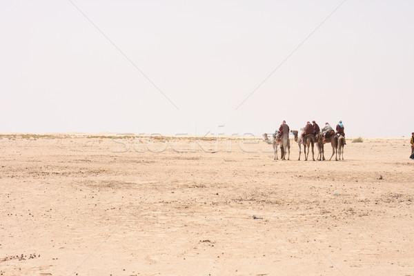 Tevék Szahara száraz Tunézia égbolt nap Stock fotó © jonnysek