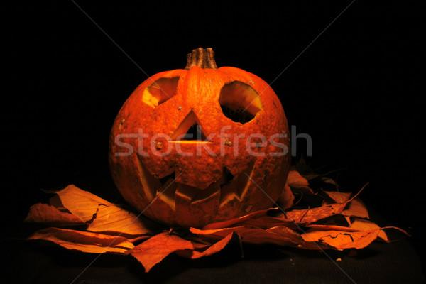 Halloween pumkin  Stock photo © jonnysek
