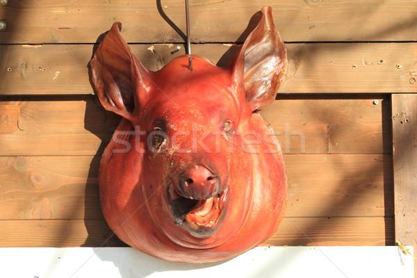 pig head Stock photo © jonnysek