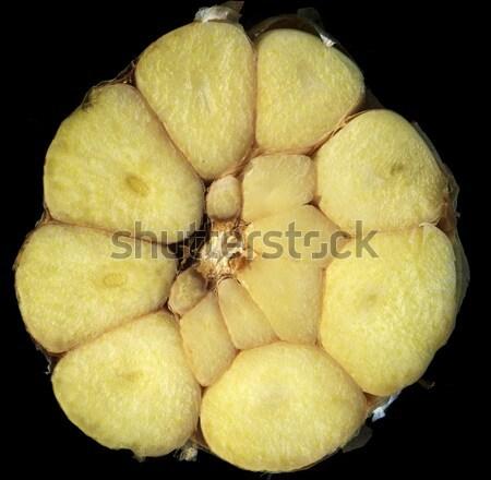 garlic Stock photo © jonnysek