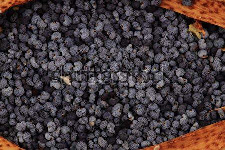 Amapola semillas textura agradable naturales flor Foto stock © jonnysek