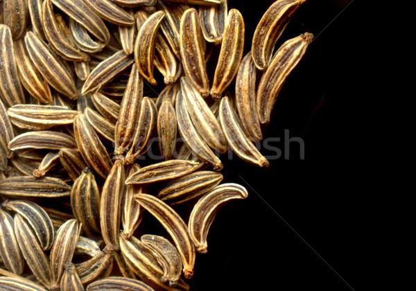 Karwij detail kruidenier zwarte textuur zaad Stockfoto © jonnysek