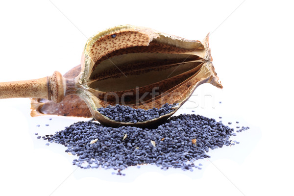 natural poppy head with seeds Stock photo © jonnysek