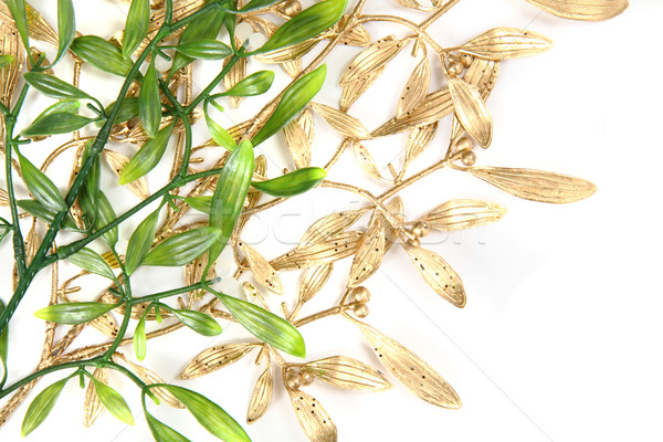green and gold christmas mistletoe background Stock photo © jonnysek