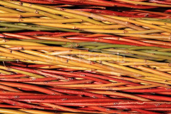 czech easter rods background Stock photo © jonnysek