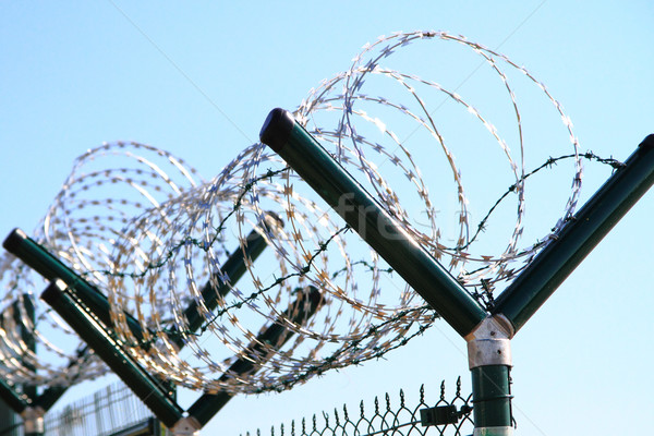 barbed wire against blue sky  Stock photo © jonnysek