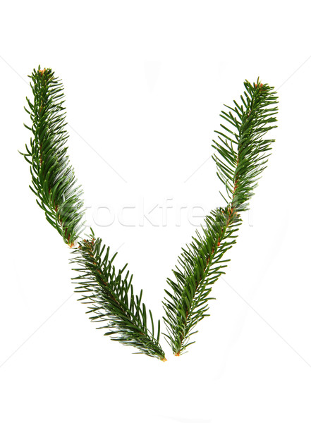 V - symbol from christmas alphabet Stock photo © jonnysek