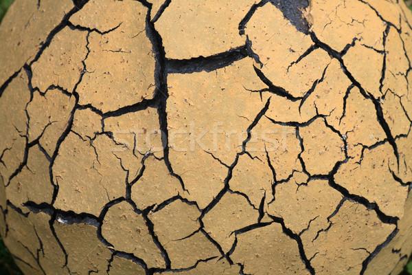 dry background Stock photo © jonnysek