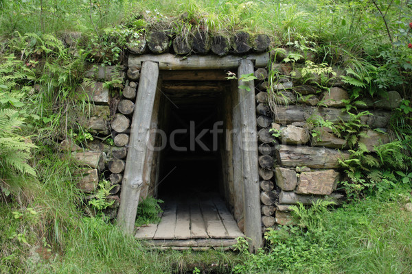 old mine entry Stock photo © jonnysek