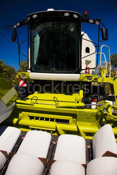 Ver milho verão trigo cortar Foto stock © joruba