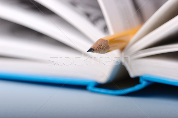 Pencil in book Stock photo © joruba