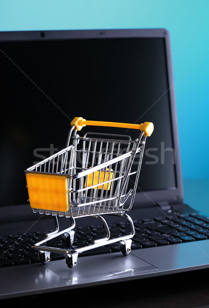 Ecommerce online winkelen winkelwagen notebook laptop technologie Stockfoto © joruba