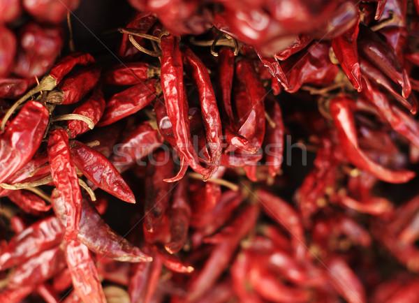 Monte secas grupo vermelho mexicano Foto stock © joruba