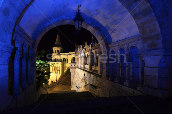 Stock photo: Fishermans bastion Budapest in Hungary at night
