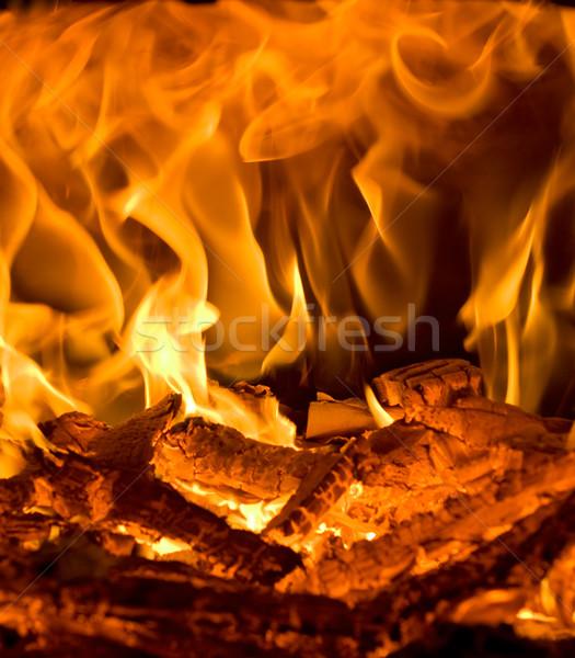 Burning fire Stock photo © joseph73