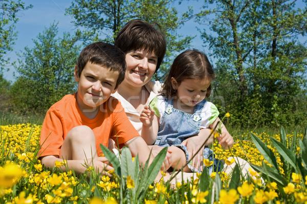 Happy family among yellow flowers Stock photo © joseph73