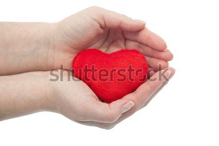 Chroniony serca kobieta palmy czerwony zdrowia Zdjęcia stock © joseph73