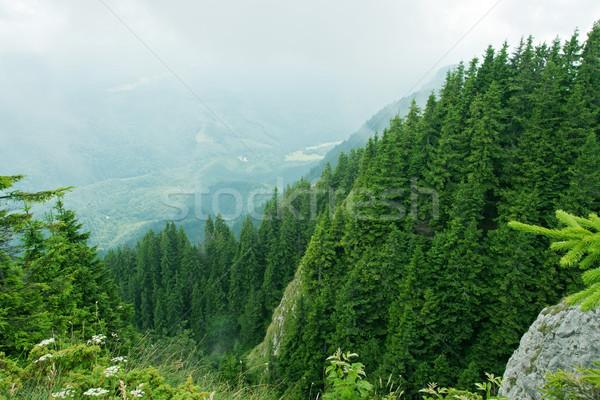 Beautiful landscape Stock photo © joseph73