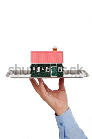недвижимости предлагать бизнесмен дома бизнеса Сток-фото © joseph73