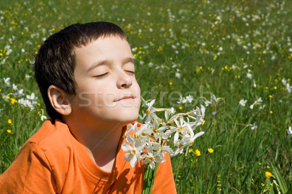 Chłopca kwiaty łące kwiat twarz włosy Zdjęcia stock © joseph73