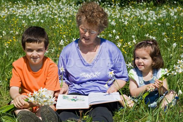 Großmutter Enkelkinder Lesung glücklich Geschichte Blume Stock foto © joseph73