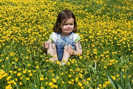 Crying girl Stock photo © joseph73
